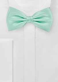Solid Mens Bow Tie in Summer Mint