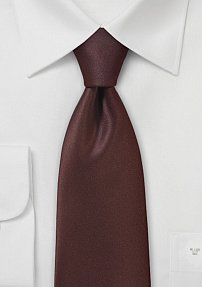 Regal Solid Hued Tie in Burgundy