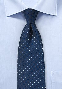 Elegant Micro Dots in Light Blue and Navy