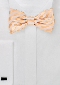 Elegant Men's Bow Tie in Pastel-Peach