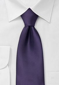 Clip On Necktie in Dark Purple