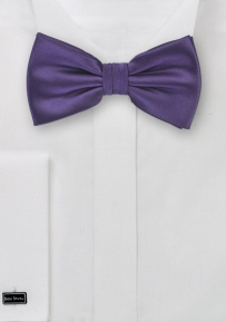 Mens Bow Tie in Solid Purple