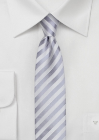 Solid Stripe Design Skinny Tie in Silver