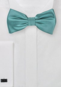 Men's Bow Tie in Teal