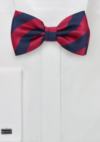 Navy and Cherry Striped Bowtie