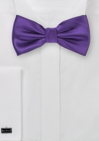 Solid Hued Bow Tie in Regency Purple