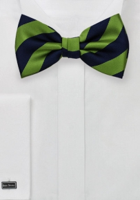 Diagonal Striped Bow Tie in Blue and Green