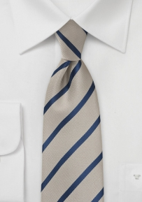 Repp Stripe Tie in Platinum and Dark Navy
