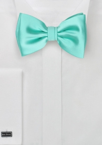 Beach Glass Color Bow Tie