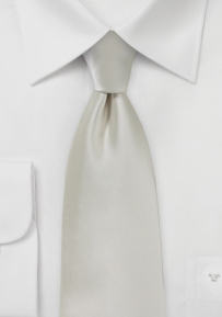 Elegant Men's Tie in Frosted Silver