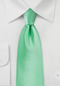Shiny Mint Colored Kids Tie