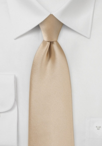 Shiny Boys Length Tie in Oatmeal Color