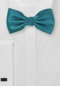 Formal Oasis Mens Bow Tie