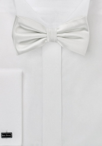 Formal Ivory Color Bow Tie