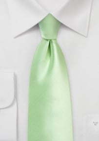 Solid XL Length Satin Tie in Winter Mint