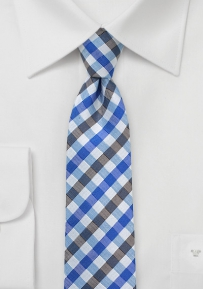Summer Gingham Tie in Blue and Silver