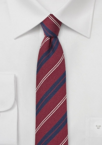 Autumn Skinny Tie in Burgundy and Navy