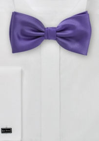 Men's Bow Tie in Purple