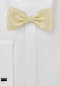 Solid Hued Bow Tie in Chamomile