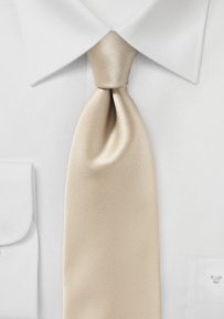 Formal Satin Finish Tie in Golden Champagne