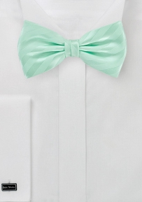 Bow Tie with Stripes in Summer Mint