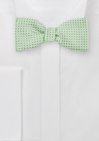 Modern Bow Tie in Platinum and Lime