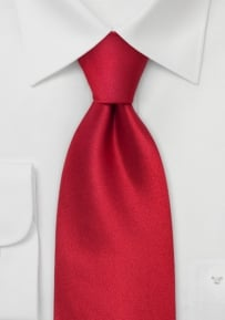Kids Silk Tie in Solid Red