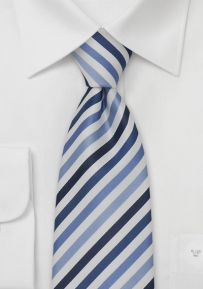 Elegant Blue and White Silk Tie