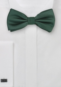 Solid Color Bow Tie in Dark Hunter Color
