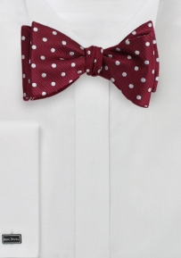 Fun Polka Dot Bow Tie in Red and Silver