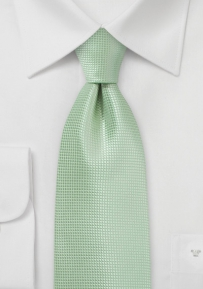 Solid Colored Tie in Seacrest Green for Tall Men